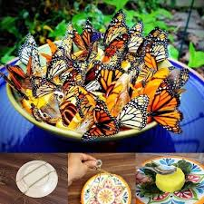 ideas diy amazing butterfly feeder