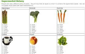 plants we eat worksheet worksheets