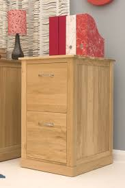 Wooden 2 Drawer Vertical File Cabinet by File Cabinets Charming 2 Drawer Oak Filing Cabinet Images 2