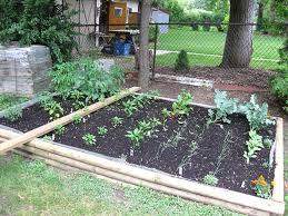 simple backyard design amazing beautiful landscape ideas images