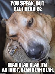 Stoner Dog Meme Generator - image tagged in boring fun moron politics stoner dog grumpy dog