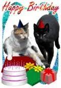 birthday cards animal themed from printfree