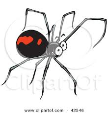 black widow spider cartoon marcia richards