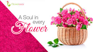 flower delivery coupons browse freecouponcodes co in to use flower aura coupons to get flat