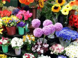 florists in florists in bangalore list of flower shops in banglaore