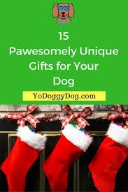 best 25 dog presents ideas on pinterest t shirt with collar
