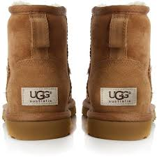 womens ugg trainer boots best 25 ugg schuhe ideas on ugg blau mode and