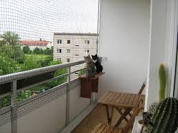katzennetze balkon katzennetz balkon tierwelt einebinsenweisheit