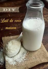 utilisation du lait de coco en cuisine diy lait de coco maison en quelques minutes my healthy sweetness