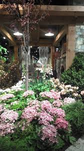 flowers and plants city garden ideas