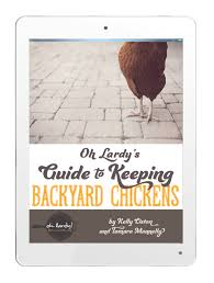 oh lardy u0027s guide to keeping backyard chickens oh lardy