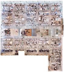 ezra magazine a milstein hall montage