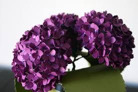 Hydrangea Flowers Gabriella Designs Free Shipping Hydrangea Flowers In A Vase