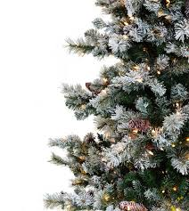 flocked scotch pine artificial trees classics collection