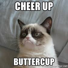 Funny Cheer Up Meme - cheer up kittens pets wallpapers