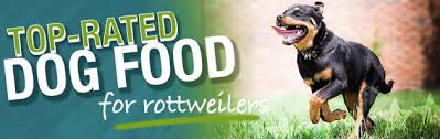what is the best dog food for a rottweiler