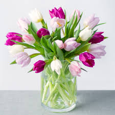 tulip bouquets tulips send tulip bouquets by post bunches co uk