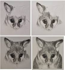 detailed pencil drawings of animals and people by doreen cross