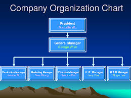 free template for organizational chart organization chart sample small business organizational chart sample company organizational chart template