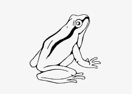 inspirational tree frog coloring 58 coloring kids