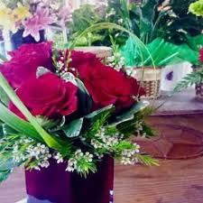 Flowers In Denton - holly u0027s gardens and florist 39 photos nurseries u0026 gardening