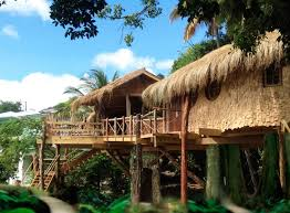 bay treehouse treehouses for rent in laborie laborie saint lucia