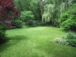 Great Small Backyard Ideas by Lawn U0026 Garden 25 Great Ideas About Large Backyard Landscaping On