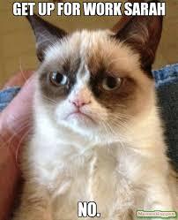 Sarah Memes - get up for work sarah no meme grumpy cat 10245 memeshappen