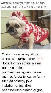 Christmas Dog Meme - christmas dog meme 28 images 17 best images about funny stuff on