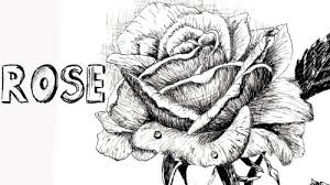 online art class how to draw a rose in pen and ink paint basket tv