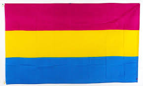 Lgbt Flag Meaning Amazon Com Pansexual Rainbow Lgbt Polyester 3x5 Foot Flag