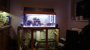 cree under cabinet lighting noma wave led under cabinet light fixture lighting designs