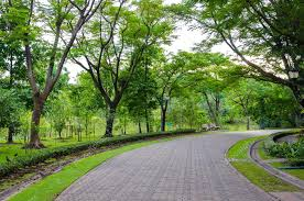 pedestrian walkway for exercise with trees in park stock photo