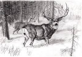 pencil for painting deer pencil drawing black and white painting in for sale