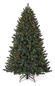 12 balsam spruce tree with clear lights tree market