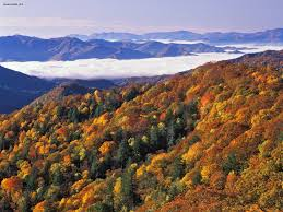 North Carolina national parks images Nature thomas divide and river of fog great smoky mountains jpg