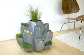 grow an array of herbs flowers in the nature planter hometone home