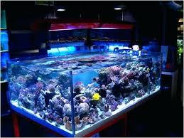 national geographic aquarium light 48 in led aquarium light national geographic 48 inch led aquarium