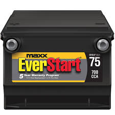 everstart maxx lead acid automotive battery group size 75n