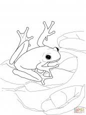 frog toad friends coloring pages colorine net 2947 coloring