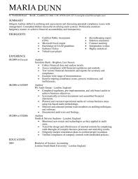 internal auditor resumes making a concise credential audit resume