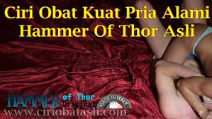 ciri obat kuat pria alami hammer of thor asli ciri obat asli