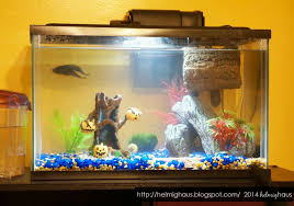 home made halloween decorations halloween fish tank decorations how to make halloween decorations