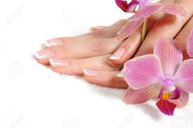 beautiful hand with perfect nail french manicure and purple orchid
