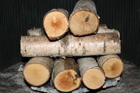 birch fireplace logs binhminh decoration