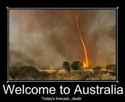 Australia Meme - australia meme guy