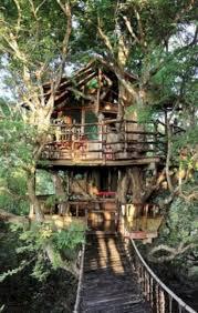 Treehouse Examples 40 Totally Inspiring Village Tree House Ideas Decorke Com