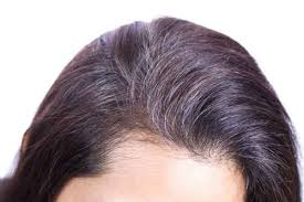 highlights to hide white hair covering grey hair with henna morrocco method