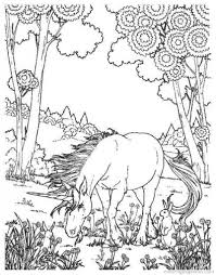 difficult and hard coloring page of realistic unicorn fantasy