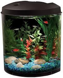 fish tank finding nemo tank pets at home exceptionalish photo